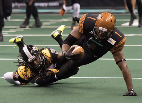 Rod Windsor, Arizona Rattlers